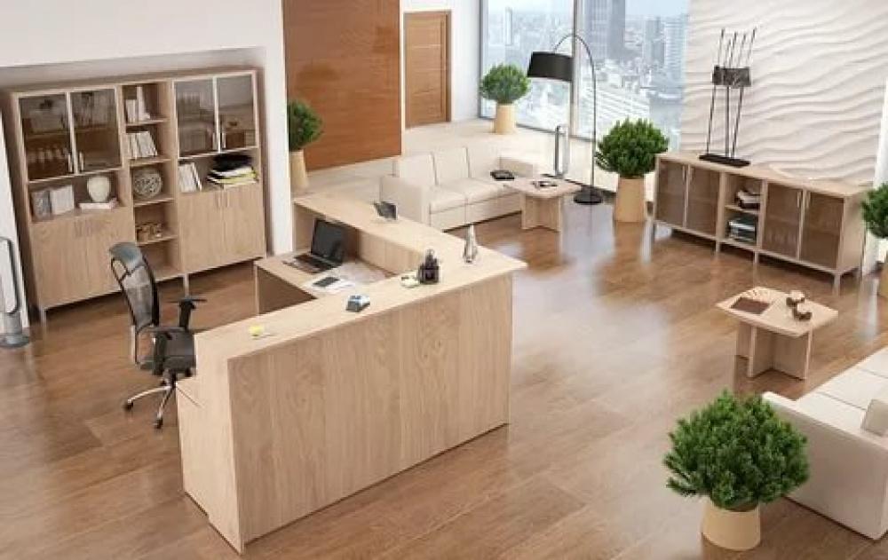 Виды и особенности выбора мебели для офиса